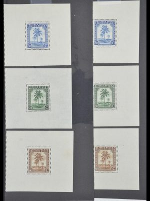 Stamp collection 33885 Belgian Congo 1886-1960.